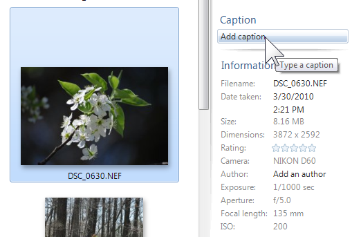Metadata: Adding information with Windows Live Photo Gallery (3/6)