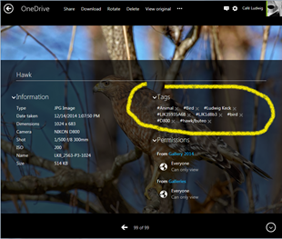 OneDrive-Tags-05